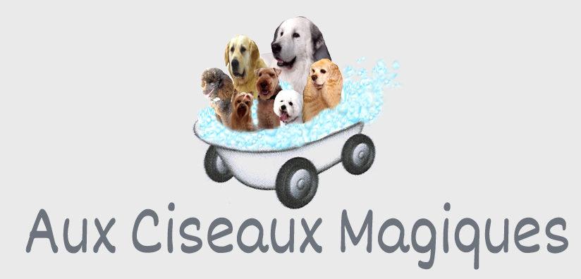 logo-ciseaux-magiques